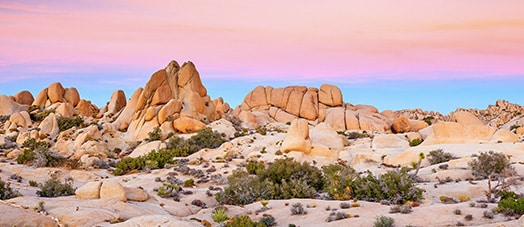 rocks in the Mojave Desert