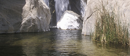 Waterfall in Tahquitz Canyon