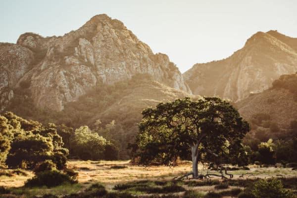 Malibu Creek State Park - Weekend Campervan Trip Los Angeles