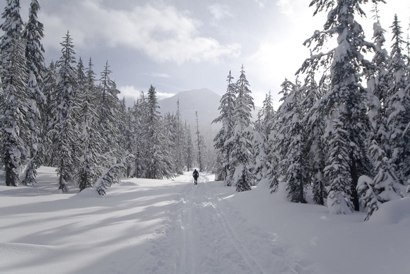 Skiier on snowy mountain at Mount Bachelor, Oregon